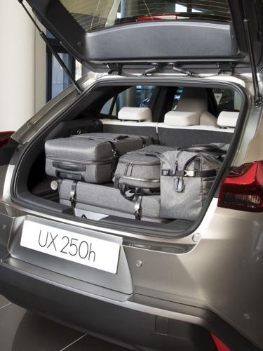 lexus-ux-250h-4x4-250h-moveco-9